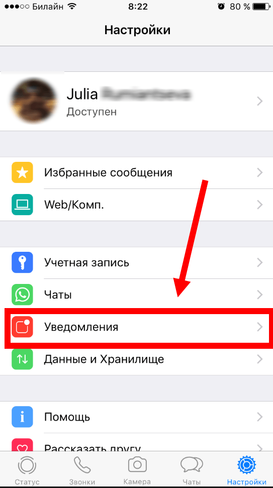 Скачать WhatsApp для iPhone